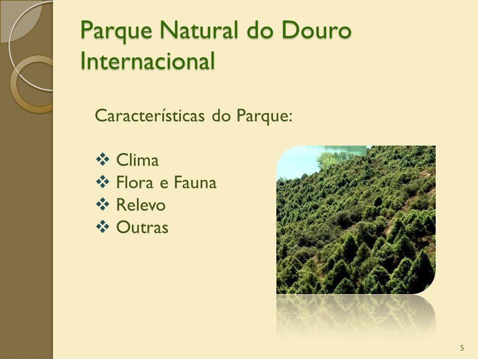 Parque Natural do Douro Internacional 5 Características do Parque: Clima Flora e Fauna Relevo Outras