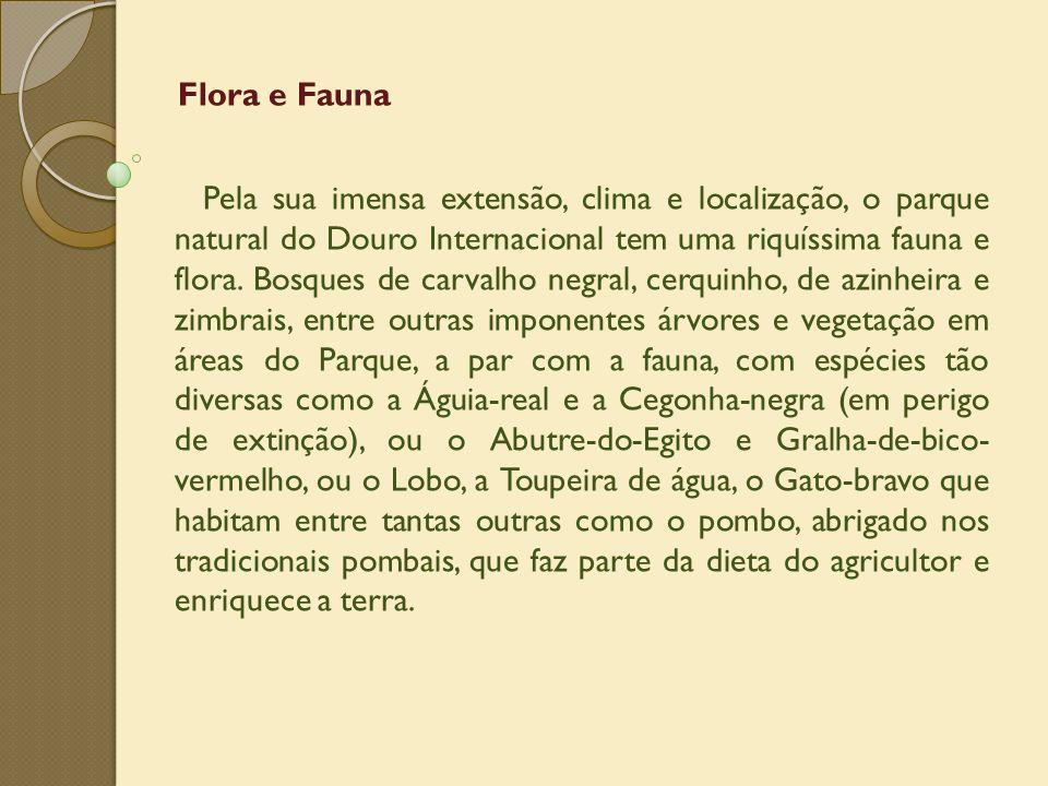 Flora e Fauna Pela sua imensa extensão, clima e localização, o parque natural do Douro Internacional tem uma riquíssima fauna e flora. Bosques de carv
