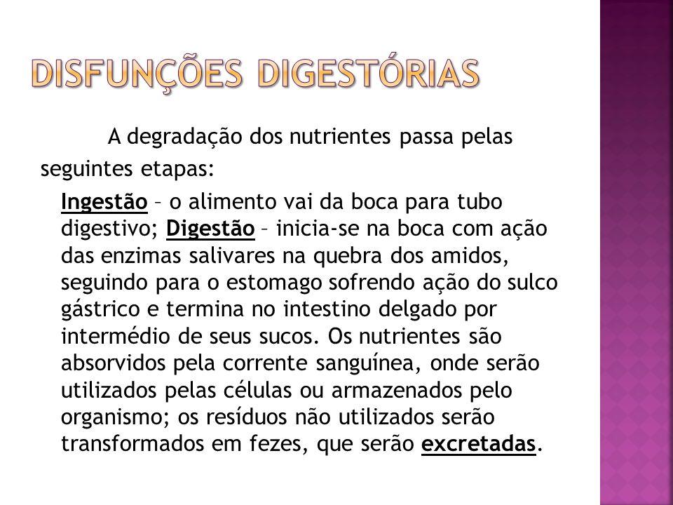 A degradação dos nutrientes passa pelas seguintes etapas: Ingestão – o alimento vai da boca para tubo digestivo; Digestão – inicia-se na boca com ação