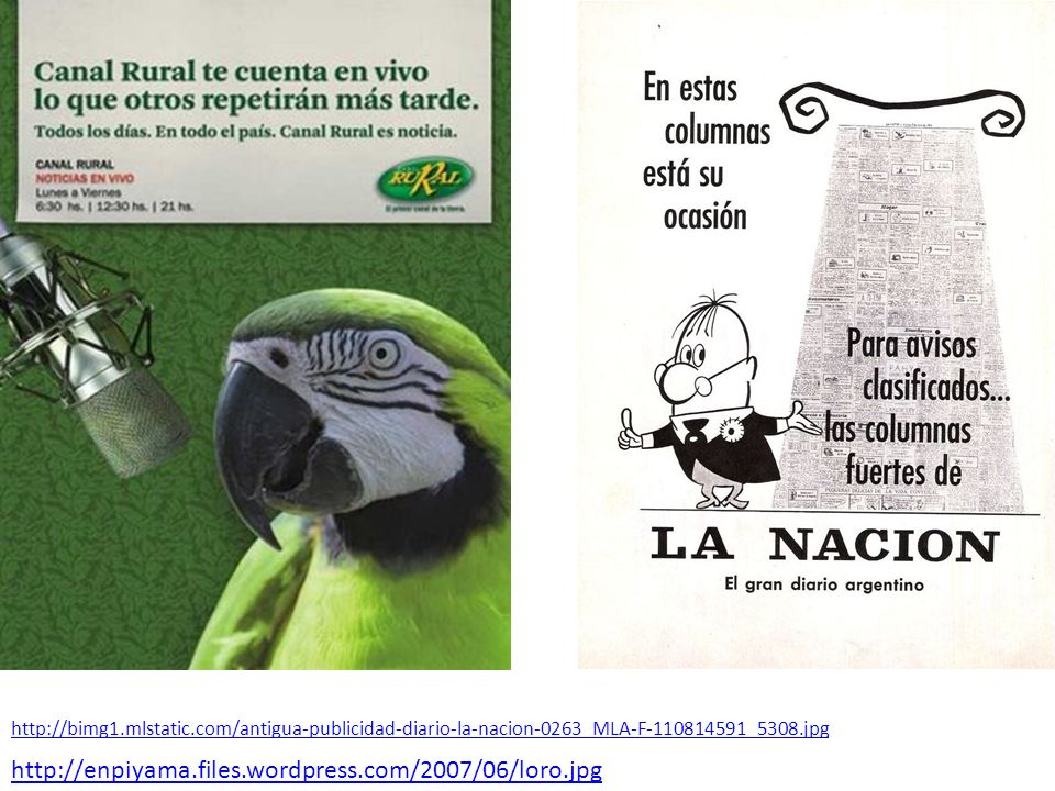 http://enpiyama.files.wordpress.com/2007/06/loro.jpg http://bimg1.mlstatic.com/antigua-publicidad-diario-la-nacion-0263_MLA-F-110814591_5308.jpg