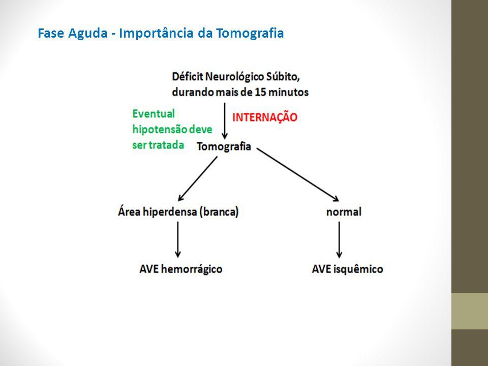 Dipiridamol Inibe a enzima fosfodiesterase levando ao aumento da AMPc e ao bloqueio da resposta plaquetária ao ADP e/ou GMPc (quando em uso concomitante com óxido nítrico ou estatinas).