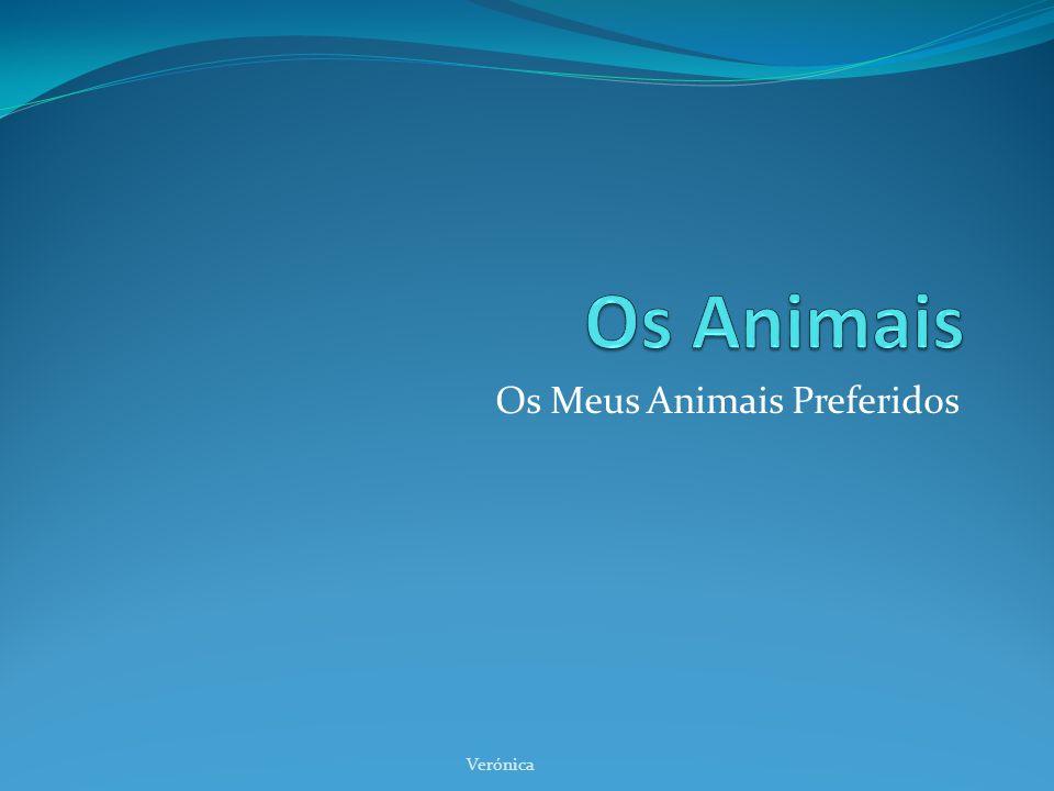 Os Meus Animais Preferidos Verónica