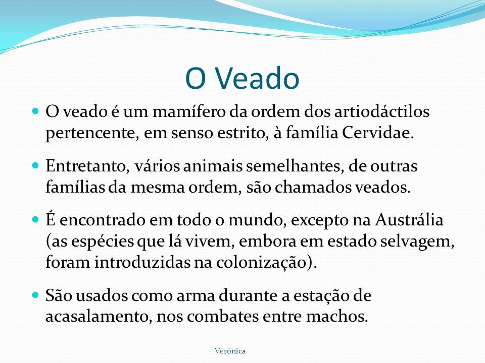 O Veado O veado é um mamífero da ordem dos artiodáctilos pertencente, em senso estrito, à família Cervidae. Entretanto, vários animais semelhantes, de