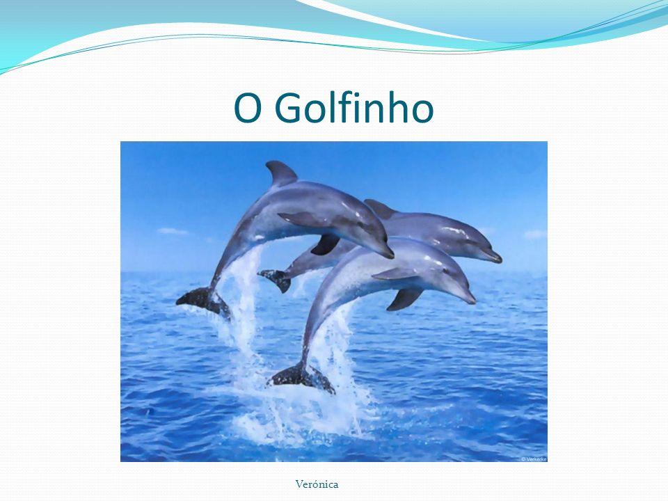 O Golfinho Verónica