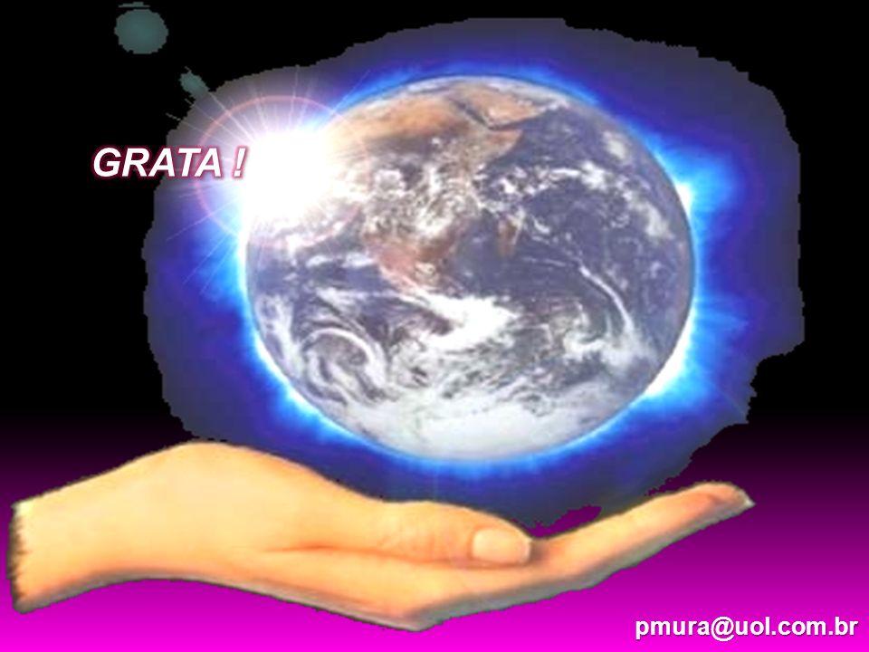 pmura@uol.com.br