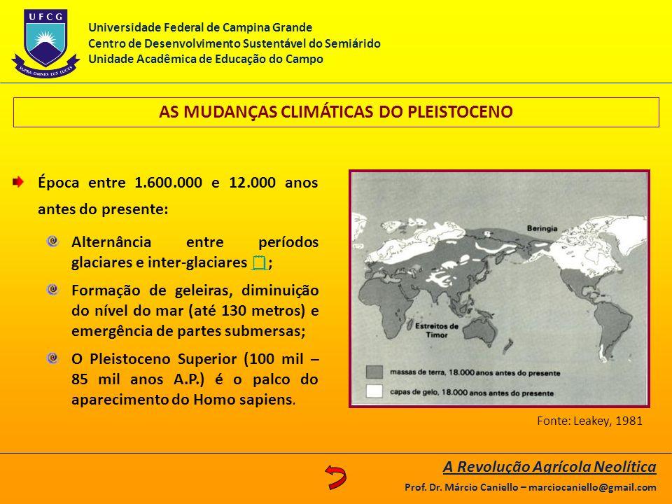 AS MUDANÇAS CLIMÁTICAS DO PLEISTOCENO A Revolução Agrícola Neolítica Prof. Dr. Márcio Caniello – marciocaniello@gmail.com Época entre 1.600.000 e 12.0