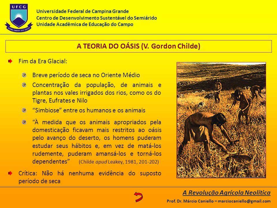 A TEORIA DO OÁSIS (V. Gordon Childe) Fim da Era Glacial: Breve período de seca no Oriente Médio Concentração da população, de animais e plantas nos va