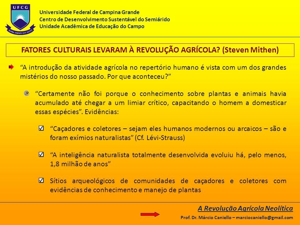 FATORES CULTURAIS LEVARAM À REVOLUÇÃO AGRÍCOLA? (Steven Mithen) A introdução da atividade agrícola no repertório humano é vista com um dos grandes mis