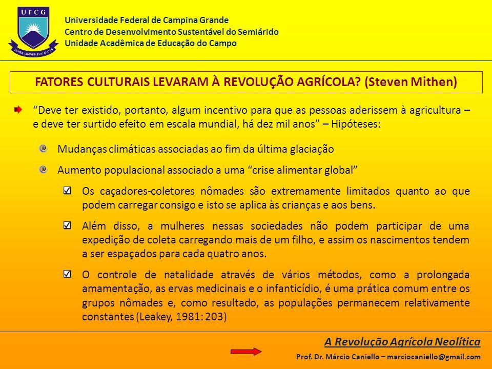 FATORES CULTURAIS LEVARAM À REVOLUÇÃO AGRÍCOLA? (Steven Mithen) Deve ter existido, portanto, algum incentivo para que as pessoas aderissem à agricultu