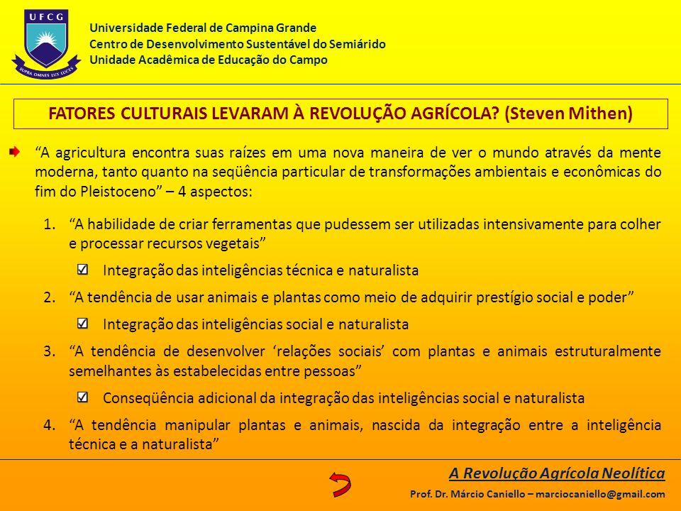 FATORES CULTURAIS LEVARAM À REVOLUÇÃO AGRÍCOLA? (Steven Mithen) A agricultura encontra suas raízes em uma nova maneira de ver o mundo através da mente
