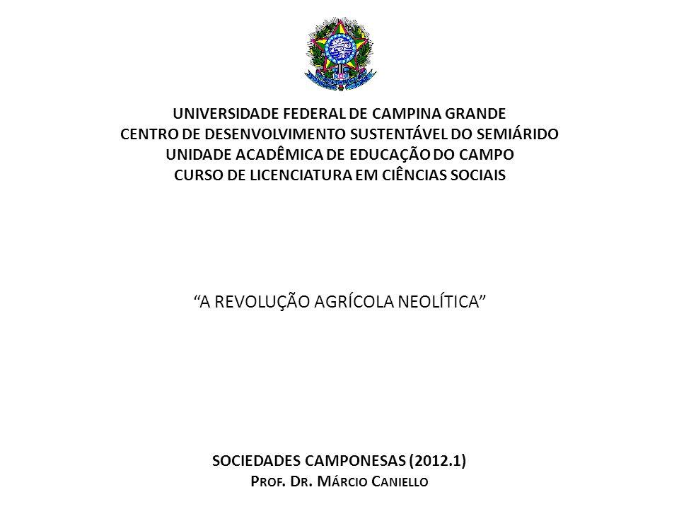 AS MUDANÇAS CLIMÁTICAS DO PLEISTOCENO A Revolução Agrícola Neolítica Prof.
