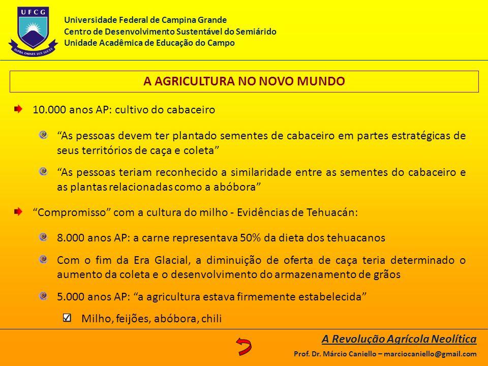 A AGRICULTURA NO NOVO MUNDO 10.000 anos AP: cultivo do cabaceiro As pessoas devem ter plantado sementes de cabaceiro em partes estratégicas de seus te