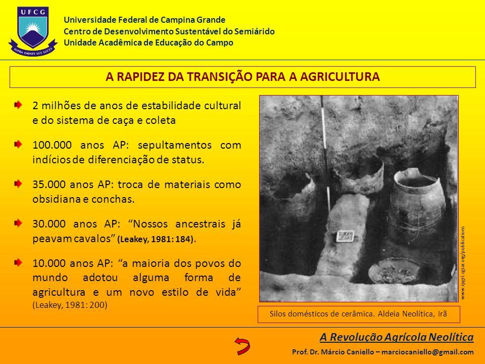 A RAPIDEZ DA TRANSIÇÃO PARA A AGRICULTURA 2 milhões de anos de estabilidade cultural e do sistema de caça e coleta 100.000 anos AP: sepultamentos com