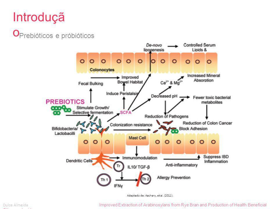 Dulce Almeida Improved Extraction of Arabinoxylans from Rye Bran and Production of Health Beneficial Oligosaccharides Métodos Scale-Up Métodos, resultados e discussão Resultados: 1 2 3 4 1 2 3 4