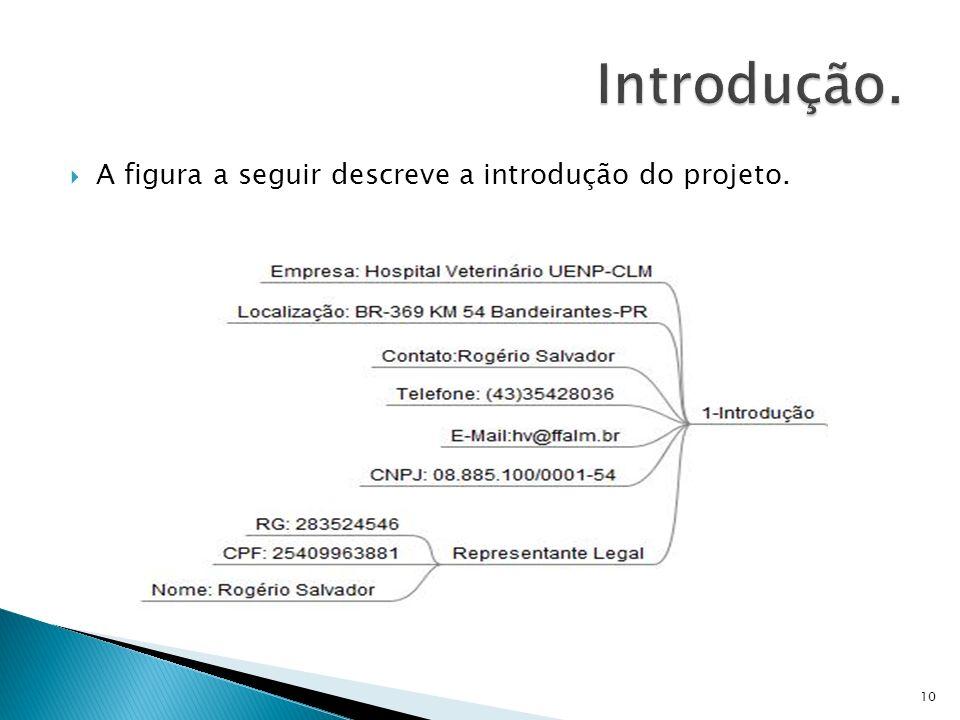 A figura a seguir descreve a introdução do projeto. 10
