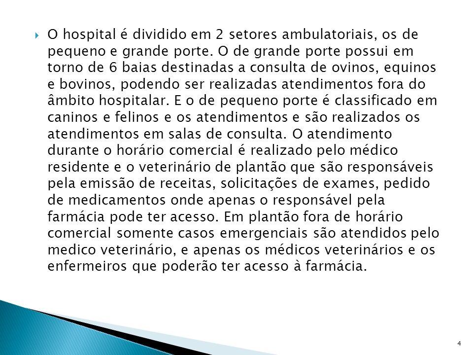 O hospital é dividido em 2 setores ambulatoriais, os de pequeno e grande porte. O de grande porte possui em torno de 6 baias destinadas a consulta de