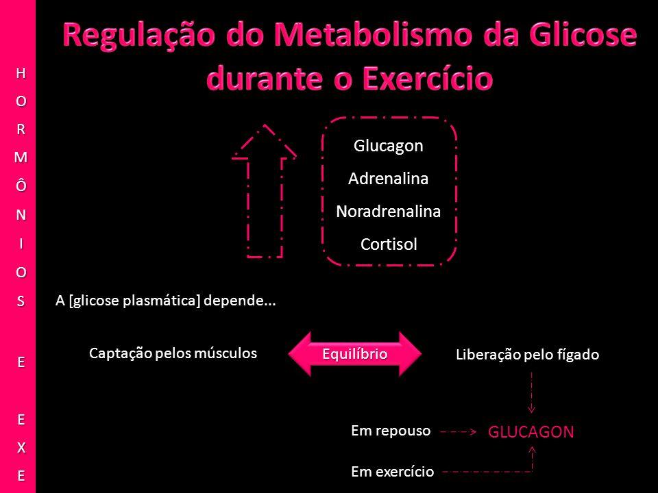 Glucagon Adrenalina Noradrenalina Cortisol Captação pelos músculos Liberação pelo fígado EquilíbrioEquilíbrio Em repouso GLUCAGON Em exercício A [glic