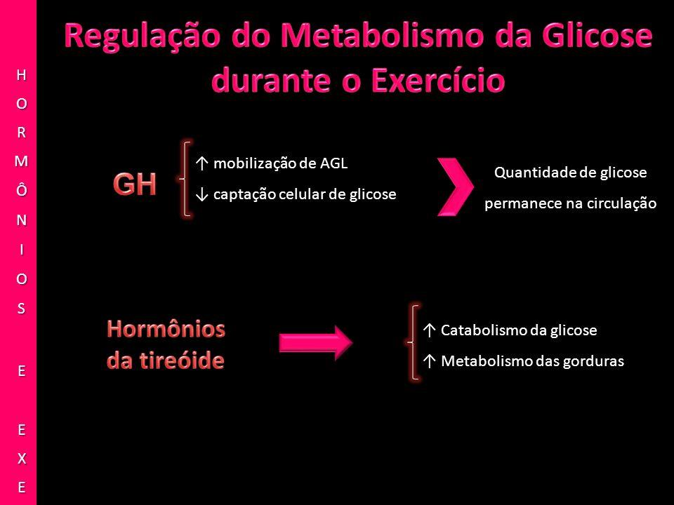 mobilização de AGL captação celular de glicose Quantidade de glicose permanece na circulação Catabolismo da glicose Metabolismo das gorduras