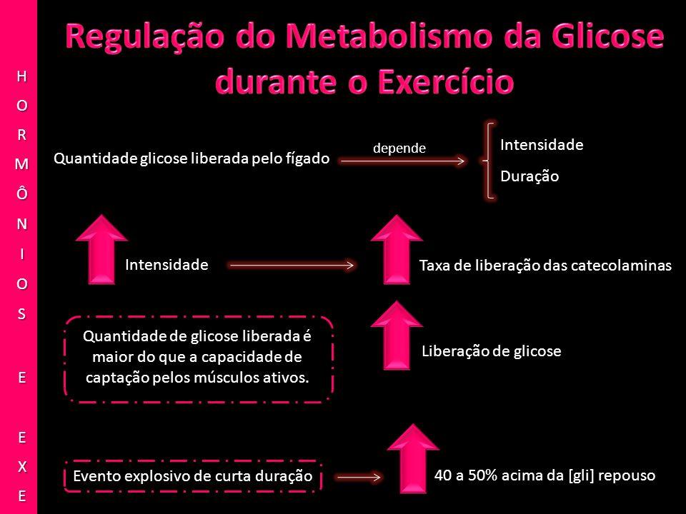 Quantidade glicose liberada pelo fígado Intensidade Duração depende Intensidade Taxa de liberação das catecolaminas Liberação de glicose Quantidade de