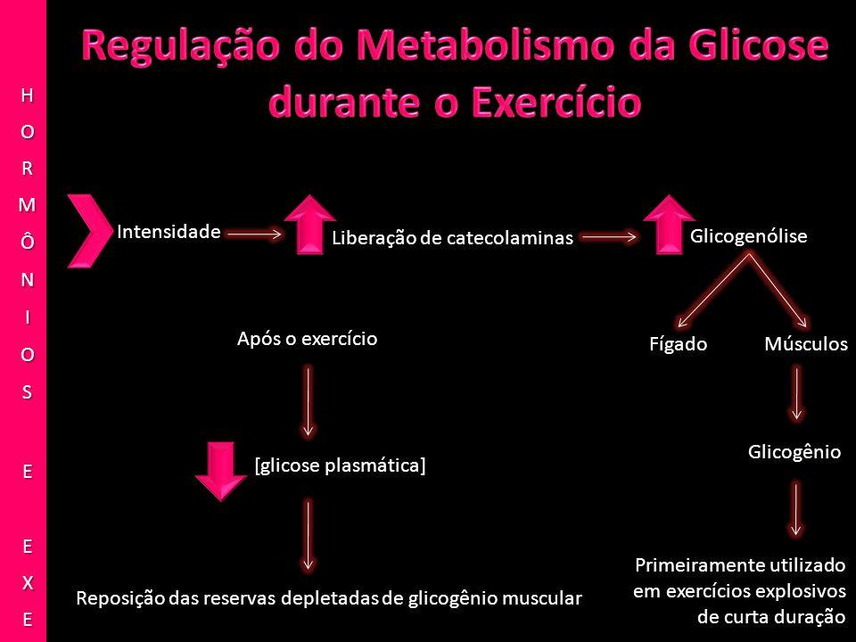 Intensidade Liberação de catecolaminas Glicogenólise FígadoMúsculos Glicogênio Primeiramente utilizado em exercícios explosivos de curta duração Após