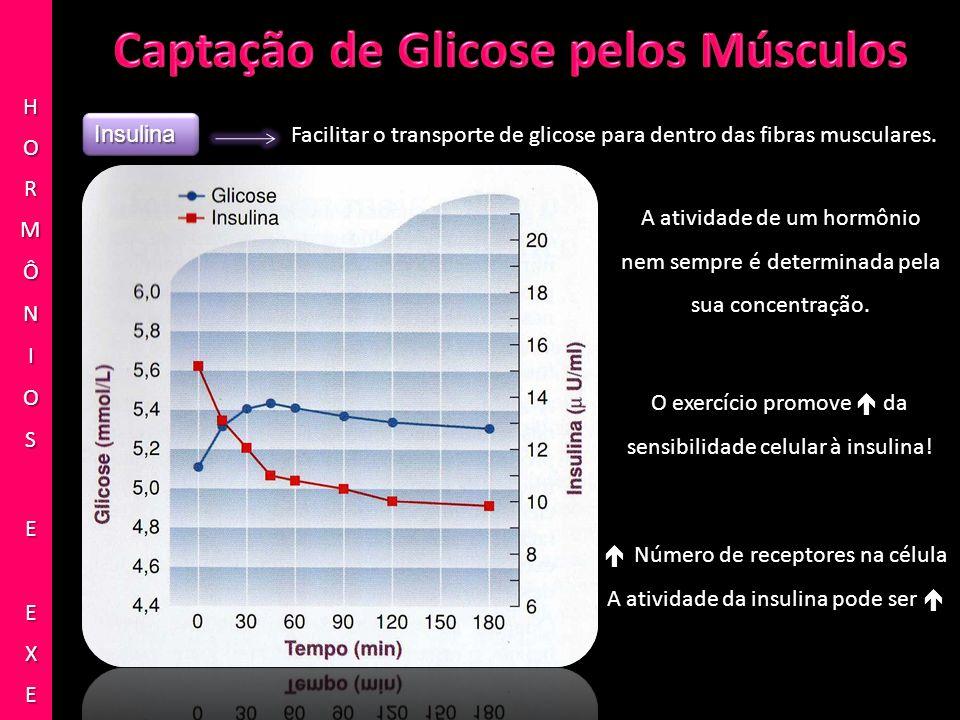 InsulinaInsulina Facilitar o transporte de glicose para dentro das fibras musculares. A atividade de um hormônio nem sempre é determinada pela sua con