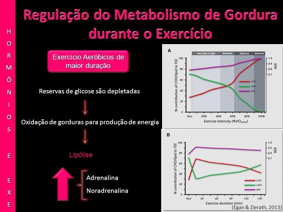 Exercício Aeróbicos de maior duração Reservas de glicose são depletadas Oxidação de gorduras para produção de energia Lipólise Adrenalina Noradrenalin