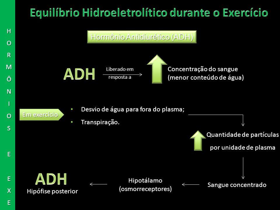 Hormônio Antidiurético (ADH) Concentração do sangue (menor conteúdo de água) Em exercício Desvio de água para fora do plasma; Transpiração. Quantidade