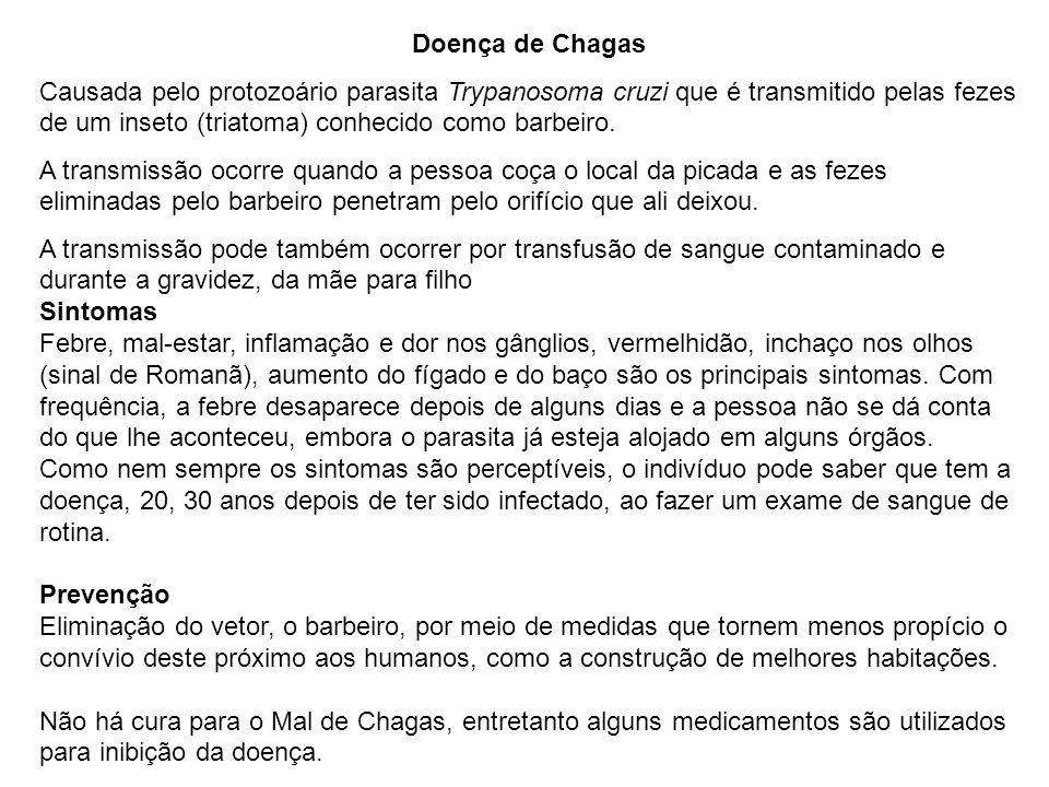 Doença de Chagas Causada pelo protozoário parasita Trypanosoma cruzi que é transmitido pelas fezes de um inseto (triatoma) conhecido como barbeiro. A