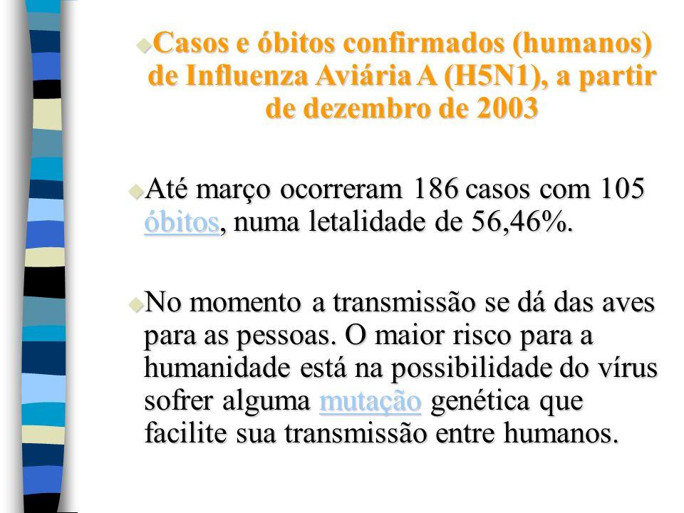 Casos e óbitos confirmados (humanos) de Influenza Aviária A (H5N1), a partir de dezembro de 2003 Casos e óbitos confirmados (humanos) de Influenza Avi