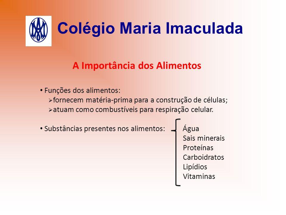 Colégio Maria Imaculada A Importância dos Alimentos Funções dos alimentos: fornecem matéria-prima para a construção de células; atuam como combustívei