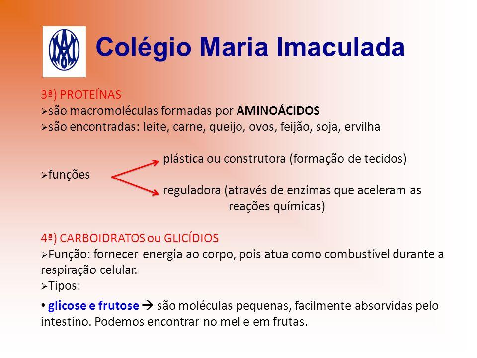 Colégio Maria Imaculada 3ª) PROTEÍNAS são macromoléculas formadas por AMINOÁCIDOS são encontradas: leite, carne, queijo, ovos, feijão, soja, ervilha p