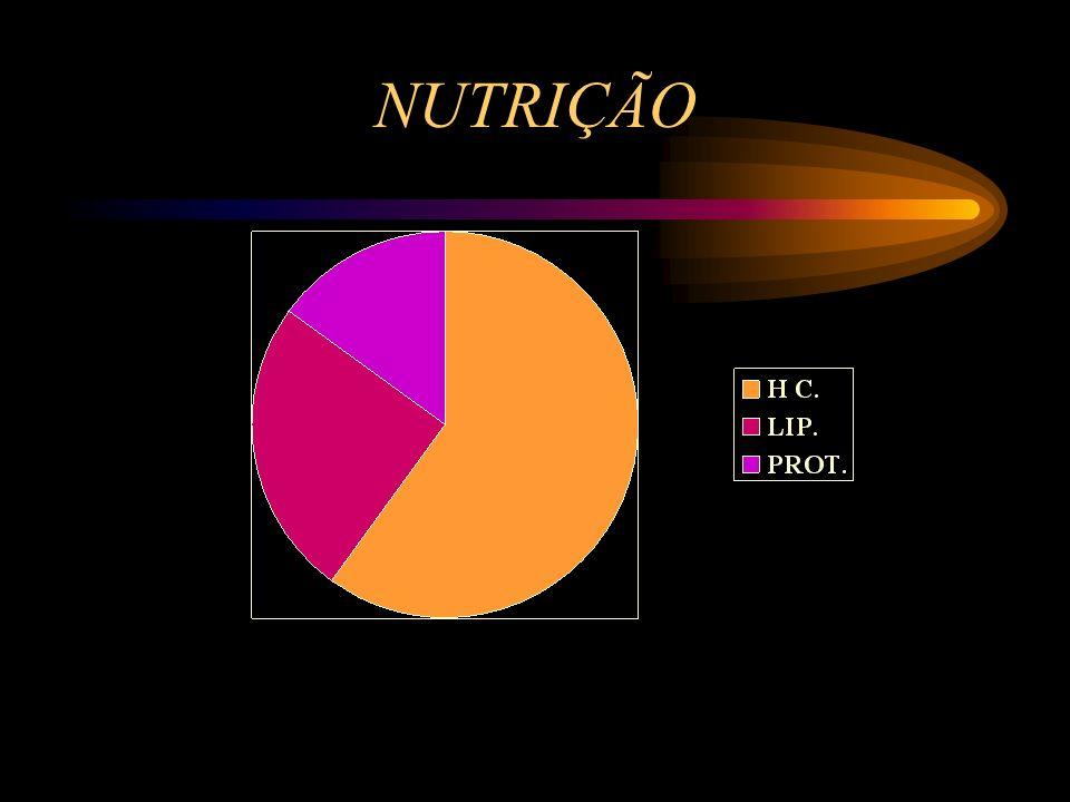 NUTRIÇÃO NO TRABALHO DE BAIXA INTENSIDADE A VIA USADA É A AERÓBICA E OS LIPIDOS CONTRIBUEM PARA MAIS DE METADE DA PRODUÇÃO DE ENERGIA À MEDIDA QUE AUM