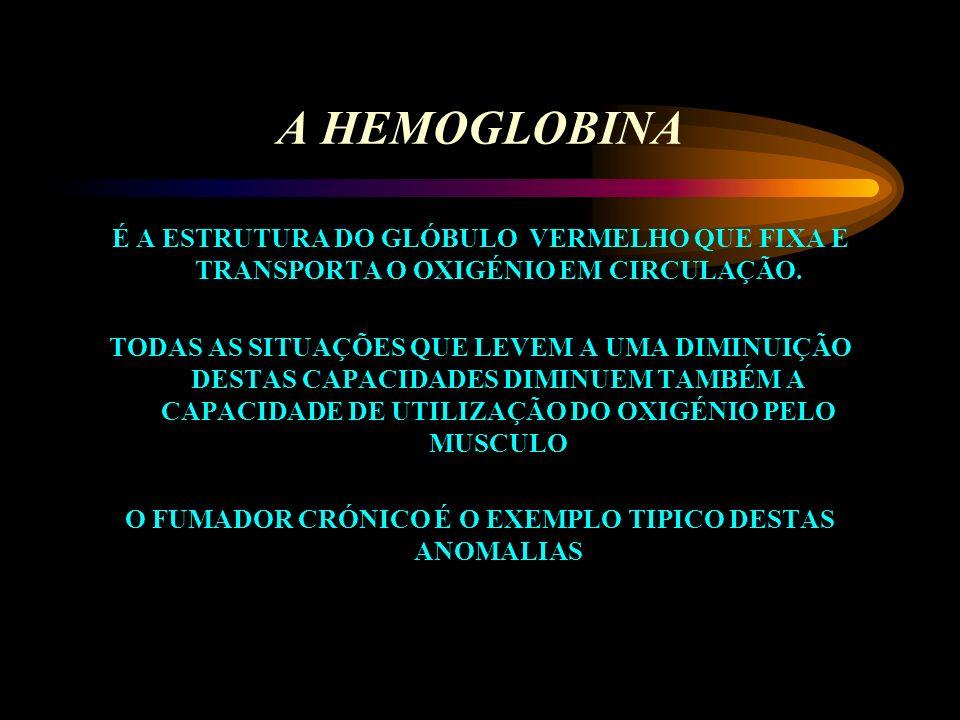 APARELHO CIRCULATÓRIO PERMITE A CIRCULAÇÃO DO SANGUE QUE ATRAVÉS DA HEMOGLOBINA TRANSPORTA O OXIGÉNIO DESDE OS PULMÕES ATÉ AOS TECIDOS PARA SER UTILIZ