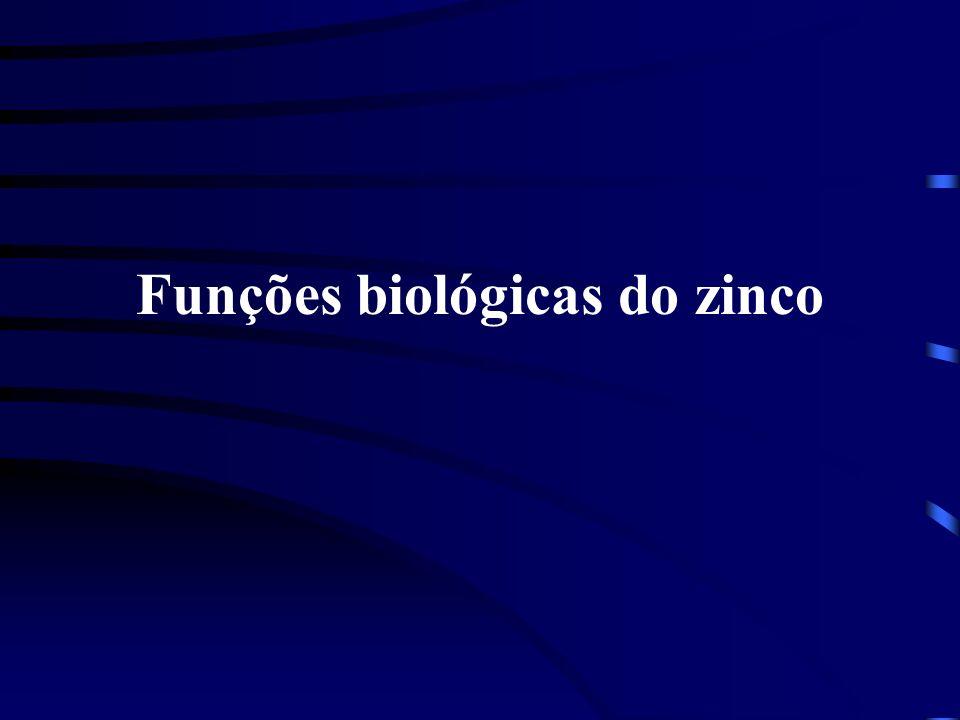 Metabolismo do zinco Sistema endocrino 1.Pâncreas O zinco é armazenado na forma de complexo a Zn-insulina nos islotes de Largenhans; 2.Tiróide Receptores de T 3 na membrana celular são ativados na presença do zinco.