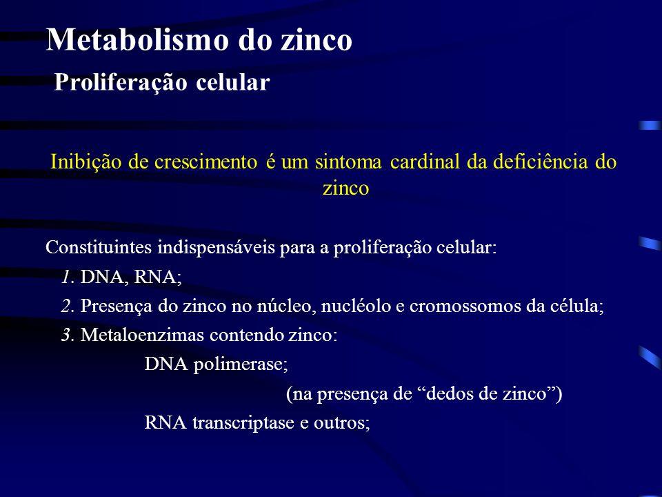 Metabolismo de zinco Dedos de zinco, complexo funcional característico: 4Cis ou 3Cis + His ou 2Cis + 2 His, separados por outros aminoácidos, com o Zn