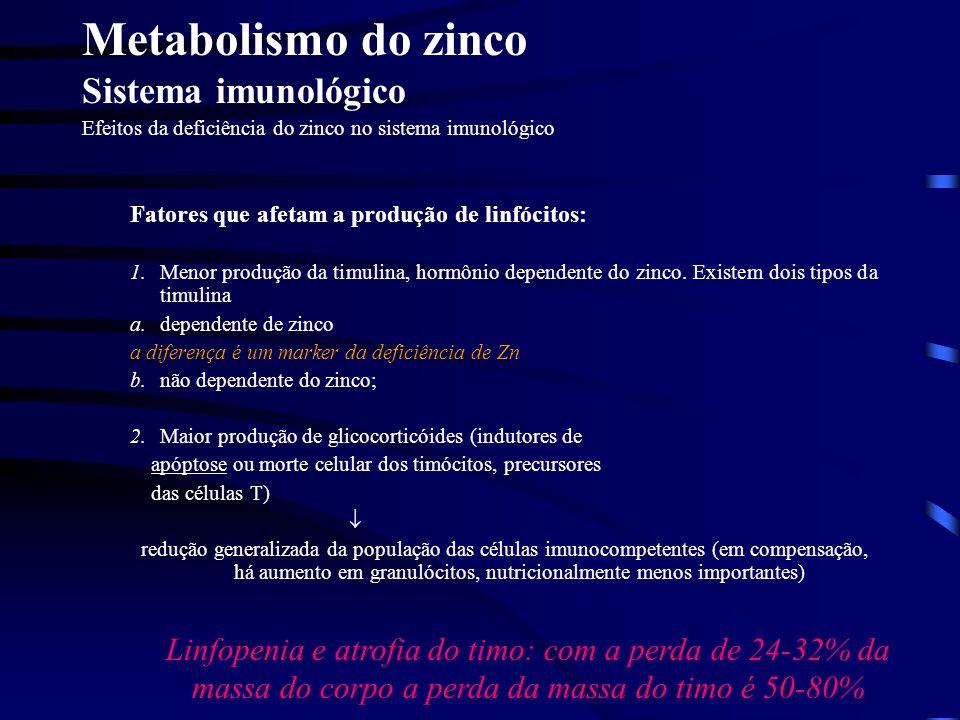 Metabolismo do zinco Crescimento de tecidos Em modelos experimentais com a dieta deficiente em Zn observa-se a perda de massa corporal entre 24 e 32%