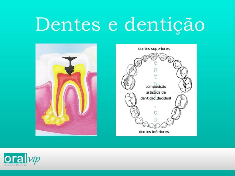 Dentes e dentição