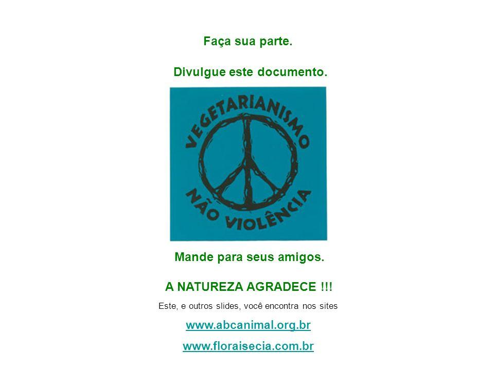 É uma filosofia e prática de vida, um caminho que procura a harmonia com o meio ambiente e a consciência do respeito ao meio ambiente e a compaixão po