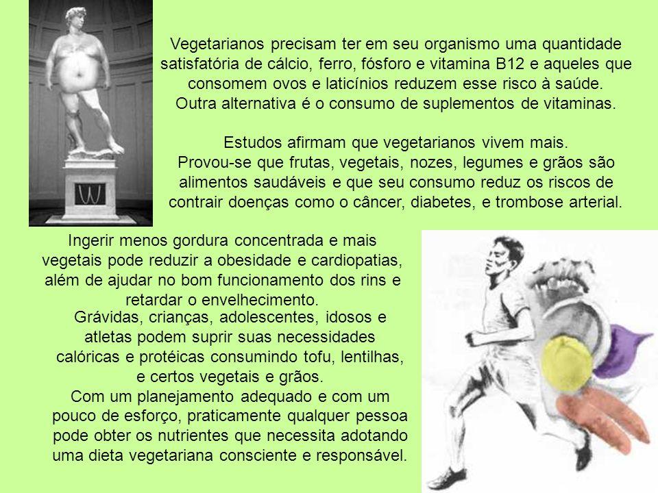 Entretanto, a adoção de uma dieta vegetariana não necessariamente faz com que uma pessoa se torne mais saudável. Ingerir muitos vegetais é extremament