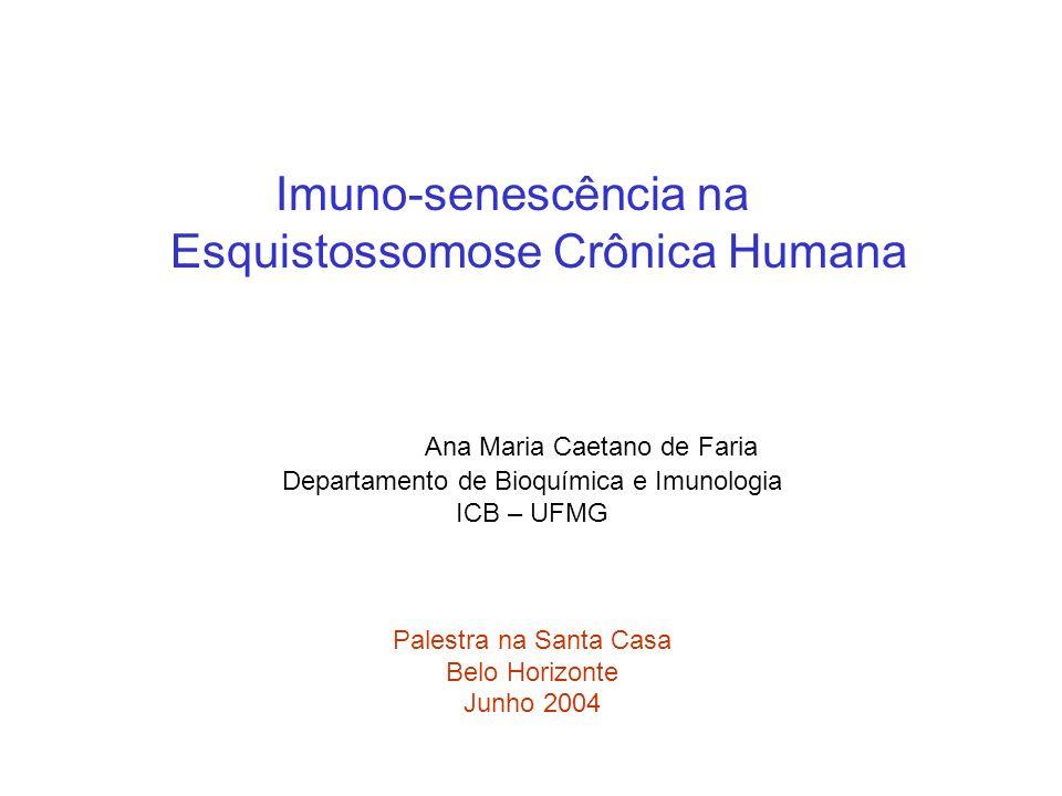 Imuno-senescência na Esquistossomose Crônica Humana Ana Maria Caetano de Faria Departamento de Bioquímica e Imunologia ICB – UFMG Palestra na Santa Ca