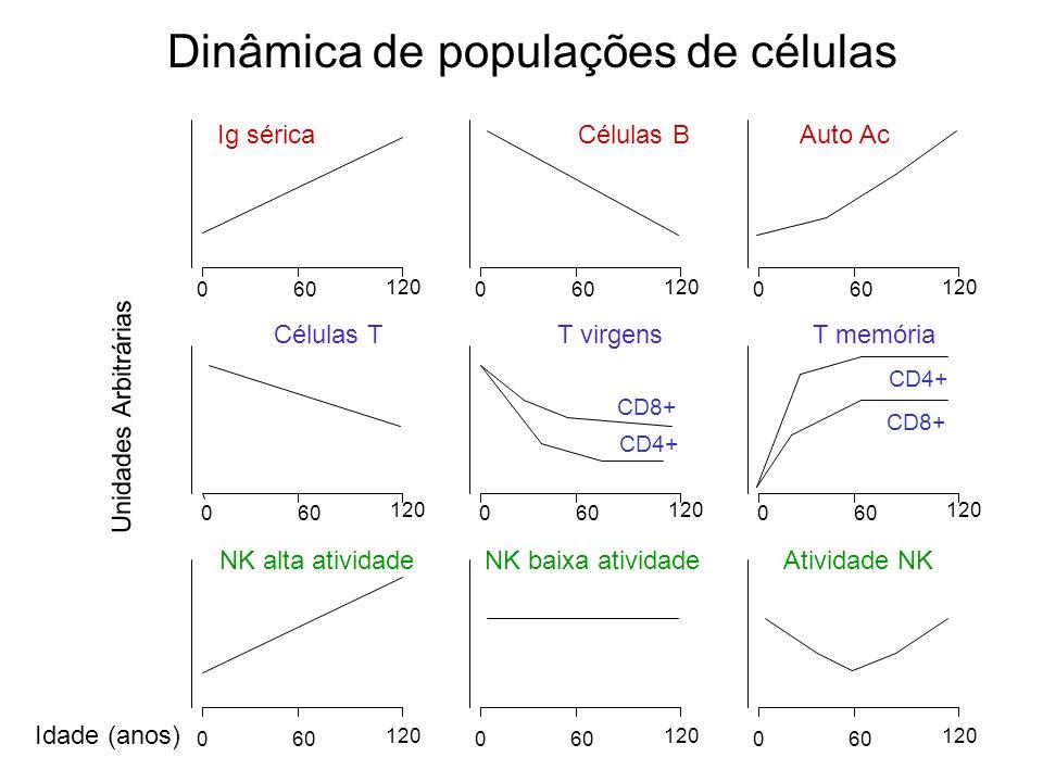 Dinâmica de populações de células Unidades Arbitrárias Idade (anos) 060 120 060 120 060 120 NK alta atividadeNK baixa atividade Atividade NK Ig sérica