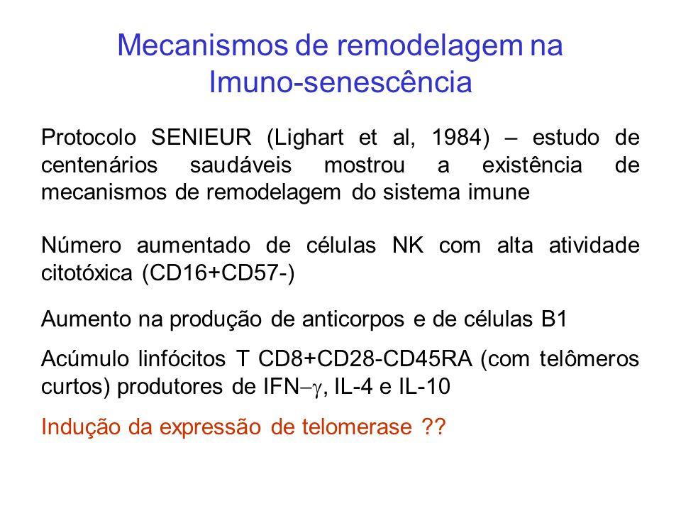 Mecanismos de remodelagem na Imuno-senescência Protocolo SENIEUR (Lighart et al, 1984) – estudo de centenários saudáveis mostrou a existência de mecan