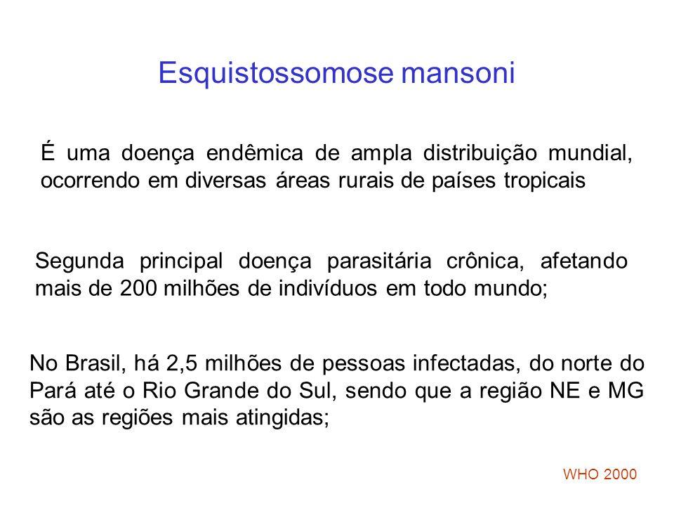 Esquistossomose mansoni É uma doença endêmica de ampla distribuição mundial, ocorrendo em diversas áreas rurais de países tropicais Segunda principal