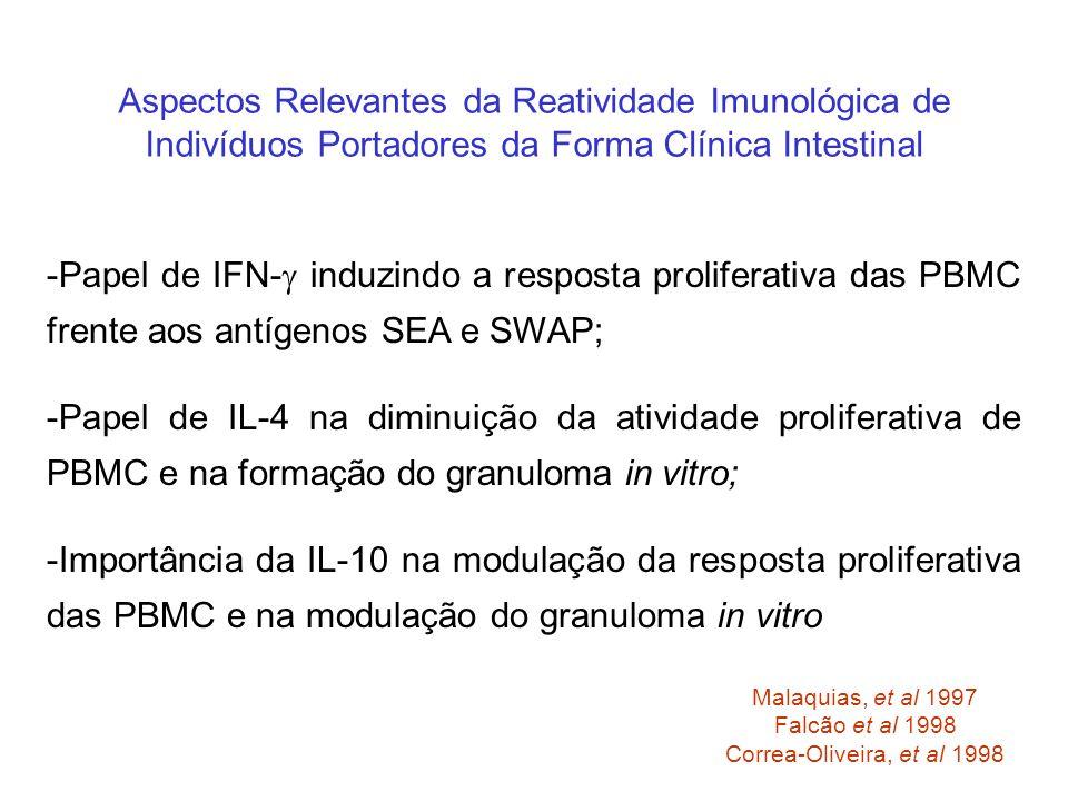 -Papel de IL-4 na diminuição da atividade proliferativa de PBMC e na formação do granuloma in vitro; Aspectos Relevantes da Reatividade Imunológica de