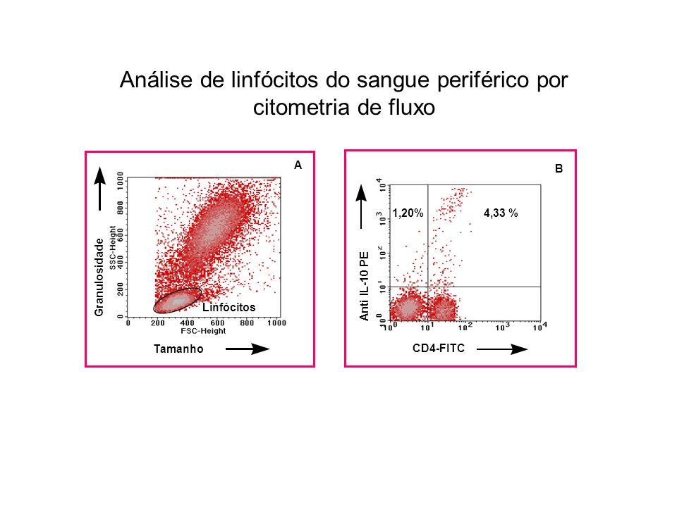 CD4-FITC Anti IL-10 PE B 4,33 %1,20% Tamanho Granulosidade Linfócitos A Análise de linfócitos do sangue periférico por citometria de fluxo