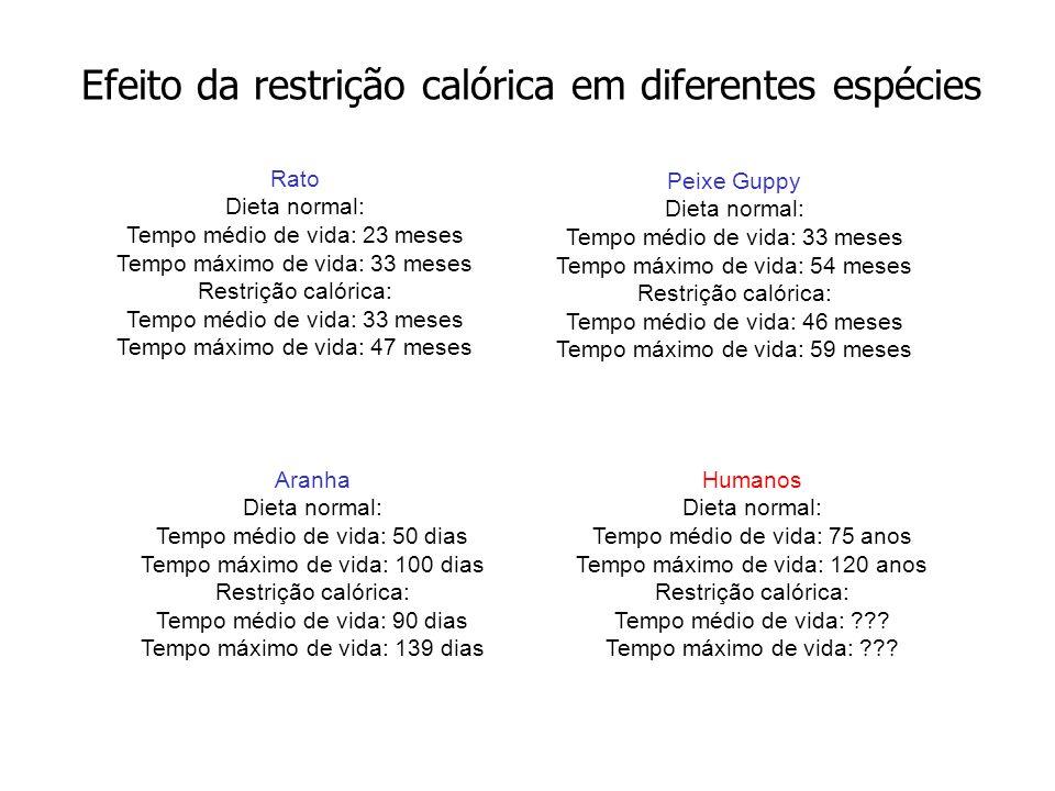 Rato Dieta normal: Tempo médio de vida: 23 meses Tempo máximo de vida: 33 meses Restrição calórica: Tempo médio de vida: 33 meses Tempo máximo de vida