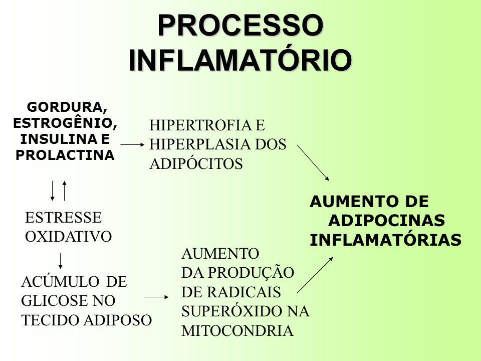PROCESSO INFLAMATÓRIO GORDURA, ESTROGÊNIO, INSULINA E PROLACTINA HIPERTROFIA E HIPERPLASIA DOS ADIPÓCITOS ESTRESSE OXIDATIVO ACÚMULO DE GLICOSE NO TECIDO ADIPOSO AUMENTO DA PRODUÇÃO DE RADICAIS SUPERÓXIDO NA MITOCONDRIA AUMENTO DE ADIPOCINAS INFLAMATÓRIAS