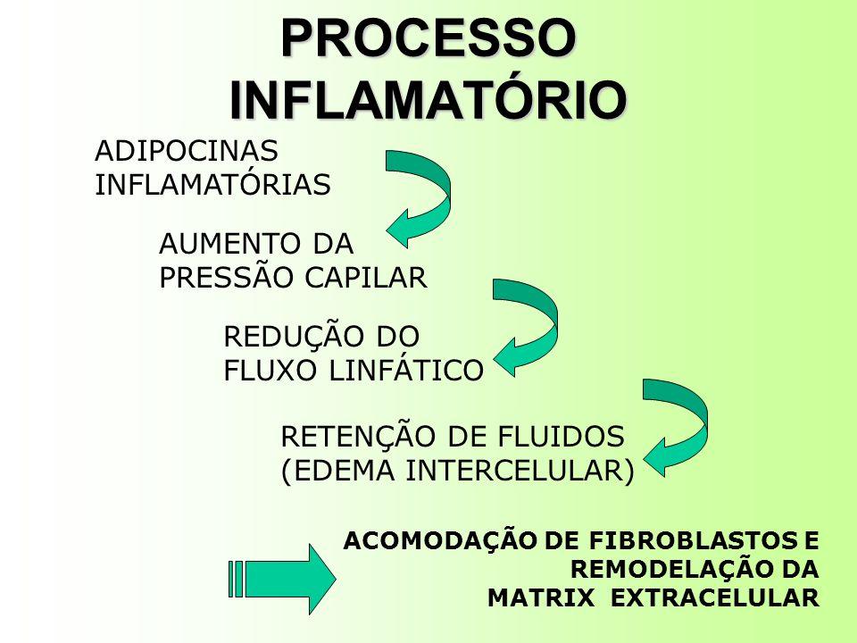 PROCESSO INFLAMATÓRIO ADIPOCINAS INFLAMATÓRIAS AUMENTO DA PRESSÃO CAPILAR REDUÇÃO DO FLUXO LINFÁTICO RETENÇÃO DE FLUIDOS (EDEMA INTERCELULAR) ACOMODAÇÃO DE FIBROBLASTOS E REMODELAÇÃO DA MATRIX EXTRACELULAR