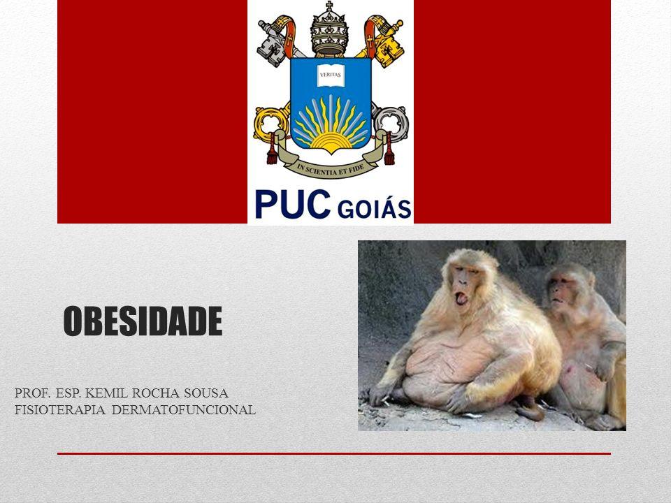 OBESIDADE PROF. ESP. KEMIL ROCHA SOUSA FISIOTERAPIA DERMATOFUNCIONAL