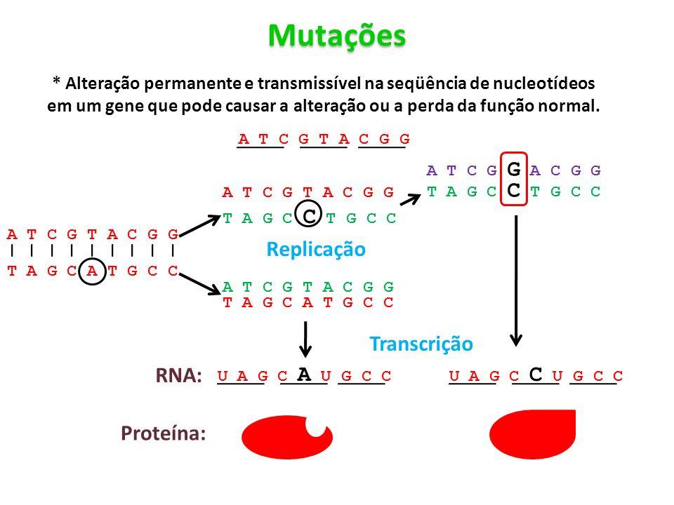 Mutações * Alteração permanente e transmissível na seqüência de nucleotídeos em um gene que pode causar a alteração ou a perda da função normal. | | |